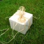 škatla darilna