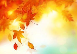 pilates-jesen